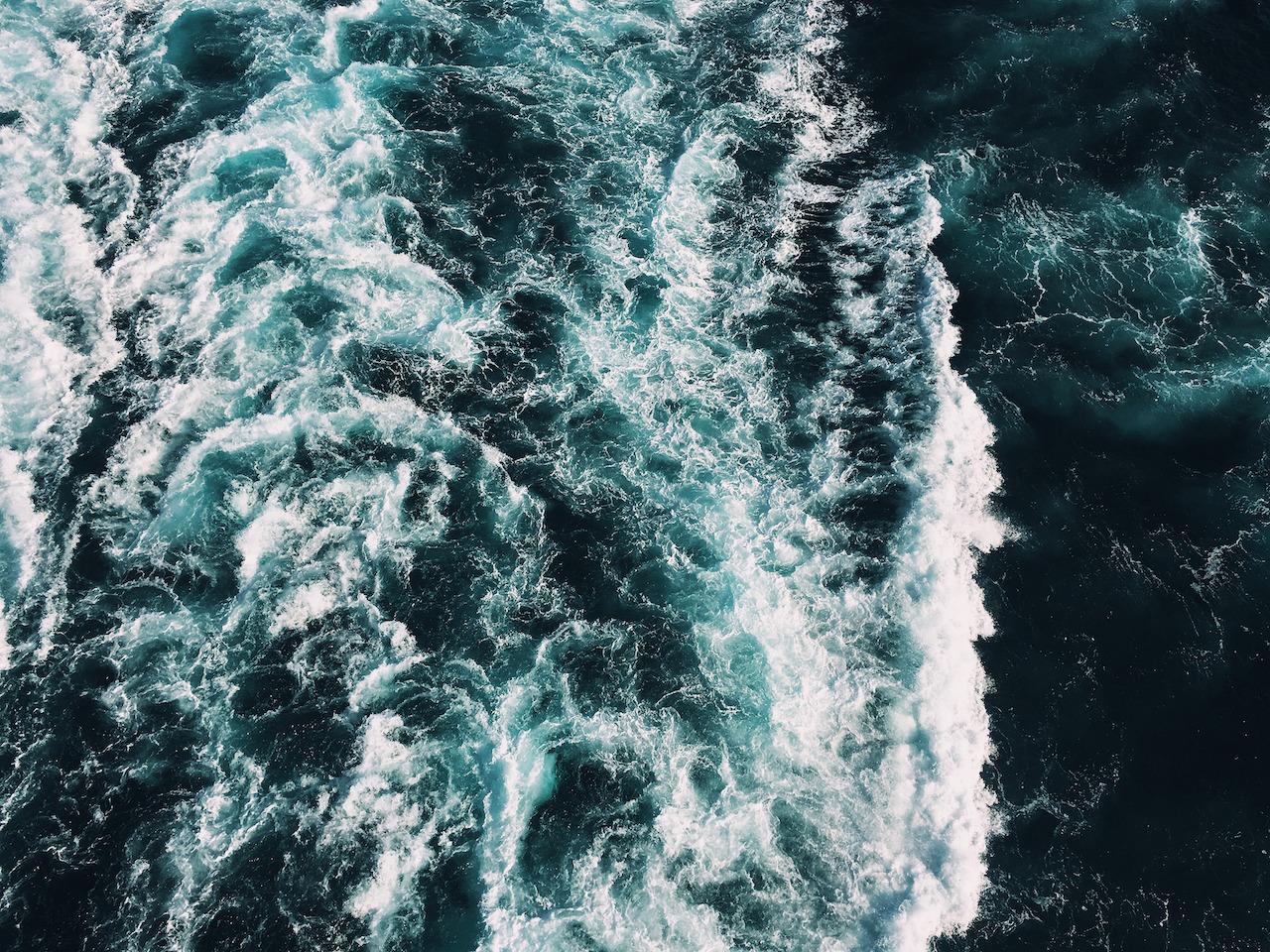 Running Tide Kelp